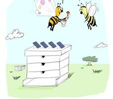 שנה טובה מענבר אנרגיה סולרית