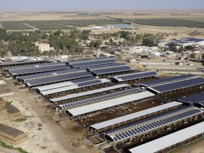 מערכת אנרגיה סולארית בגודל בינוני – 2.5 מגה וואט, קיבוץ רביבים