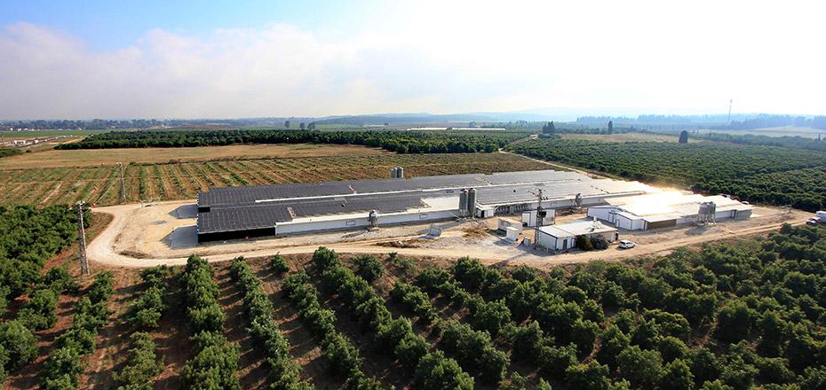 מערכת אנרגיה סולארית בגודל בינוני – קיבוץ מענית
