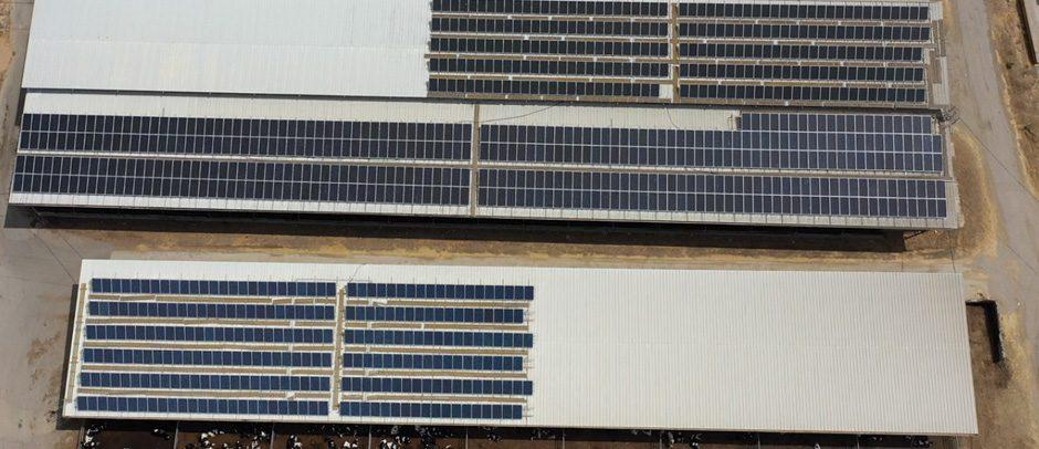 """מערכת סולארית – על גג רפת """"כהן יעקב ובניו"""" – 100 קילו וואט"""